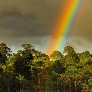 Arc en ciel amazonien